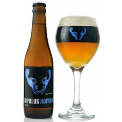 LUPULUS HOPERA 33CL 6%